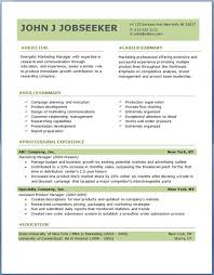 Resume Template Download Free Microsoft Word Professional Resume Templates Download Free Professional Resume