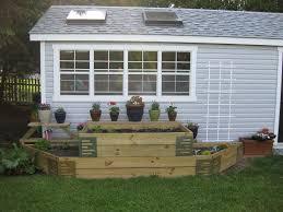 starting a vegetable garden part one
