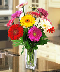 How To Design Flowers In A Vase Gerbera Daisy Vase In Boston Ma Central Square Florist