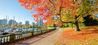 fly to vancouver canada from 182 round trip