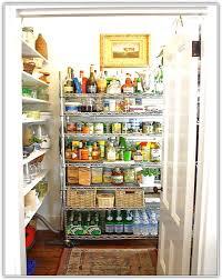 kitchen pantry shelving ideas kitchen pantry shelving ideas home design ideas