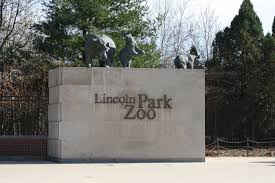 Lincoln Park Zoo Holiday Lights by Lincoln Park Zoo Youtube