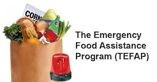 family assistance administration faa nutrition assistance cash