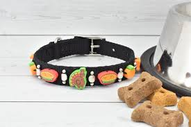 thanksgiving collars turkey collars autumn collars