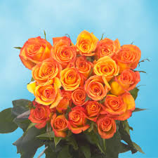 global roses orange roses flowers global
