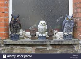 and plastic owl garden ornaments on a window ledge stock