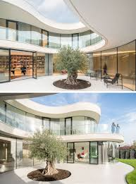 mvrdv architecture designs a home around an olive tree in