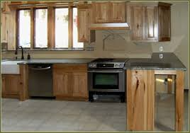 Quaker Maid Kitchen Cabinets by Stainless Steel Kitchen Cabinets Tehranway Decoration