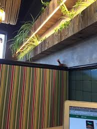 home design group spólka cywilna rocotillo gdansk restaurant reviews phone number photos