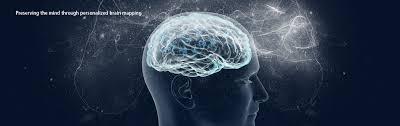 Brain Mapping Program For Translational Brain Mapping University Of Rochester
