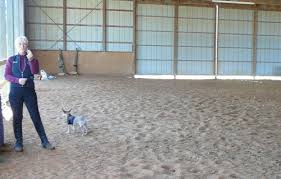 horse arena footing considerations when you build an indoor or