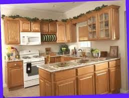 Small U Shaped Kitchen Ten Things That You Never Expect On Small U Abrarkhan Me