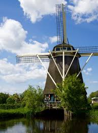 amsterdam bicycle day trip visiting windmills and cheese farms