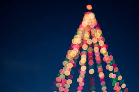 Christmas Tree Raleigh Local Christmas Events This Month New Homes U0026 Ideas
