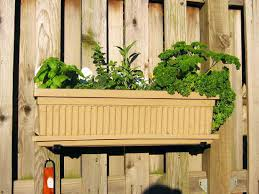 diy indoor herb garden ideas indoor plants expert