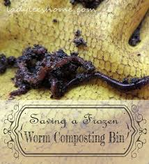 How To Make A Paper Worm - 78 best vermiculture images on worms worm farm and