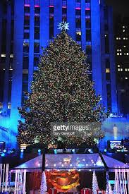 tree lighting ceremony stock photos and pictures getty