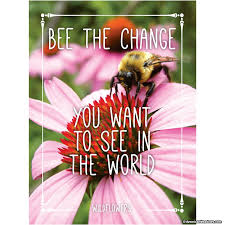 bulk seed packets bee the change seed packet american