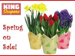 king soopers floral king soopers goldentoday golden business news