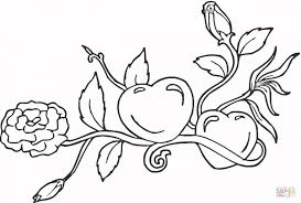 heart bow coloring pages coloring pages roses hearts