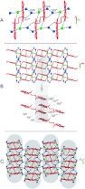 structure formation thermodynamics and interactions in 9 carboxy