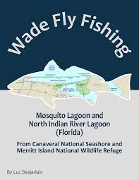 Indian River Florida Map by Mosquito Lagoon And North Indian River Lagoon Florida