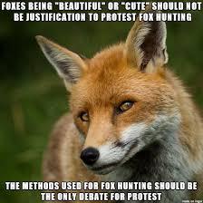 Meme Animals - is brutally hunting ugly animals ok meme on imgur