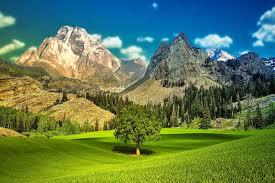 decoration de montagne vall u0026eacute e de montagne achetez des lots à petit prix