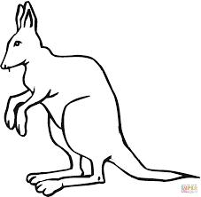 kangaroo 16 coloring page free printable coloring pages