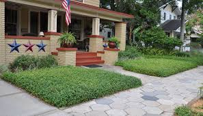 creeping and clumping ground covers for south florida gardens and