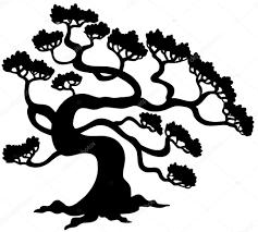 pine tree silhouette stock vectors royalty free pine tree