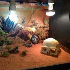 aquarium resin cool human head skull fish tank ornament terrarium