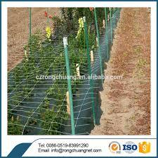 melon support net for garden netting buy melon support net