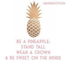 Ananas Pineapple Meme - 27 best pineapple quotes images on pinterest pine apple words and