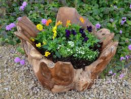 Cool Planters Teak Bowls Make Unique And Beautiful Planters Ramblings From A