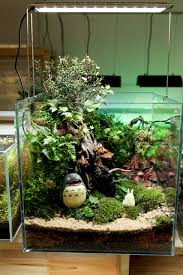 awesome betta tank this is the inspiration for the design of the