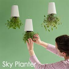 Indoor Planter Pots by Online Buy Wholesale Decorative Indoor Plant Pots From China