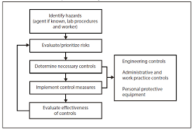 guidelines for safe work practices in human and animal medical