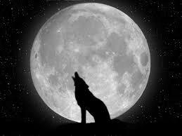 desktop black and white moon wallpaper