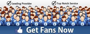 facebook fan page followers 250 facebook fan page likes