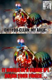 Mantis Meme - mantis shrimp by recyclebin meme center