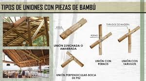 sistema constructivo con bambu youtube bambu pinterest