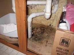 kitchen sink leaking underneath kitchen sink cool kitchen sink leaking underneath on a budget