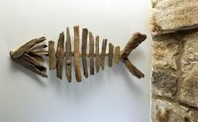 driftwood fish skeleton decorative branches