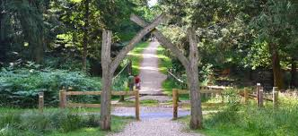 find time for the rhinefield ornamental drive new forest
