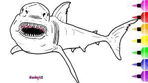white shark coloring pages for kids drawing and how to draw