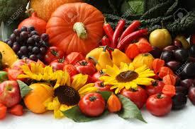 fruit and flowers autumn vegetables fruits and flowers up stock photo