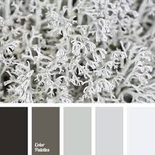 62 best winter color images on pinterest colors color palettes
