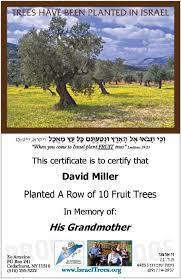 order and we will plant fruit trees in israel israel