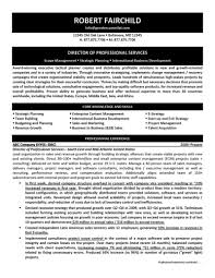 Resume Format For Sales And Marketing Manager Of Professional Services Resume